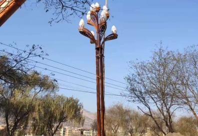 天水玉兰景观灯路灯安装